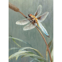 Load image into Gallery viewer, Dragonfly Sympathy Greeting Card 6 pack