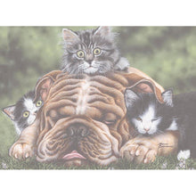 Load image into Gallery viewer, Wrinkles Birthday Greeting Card 6 pack