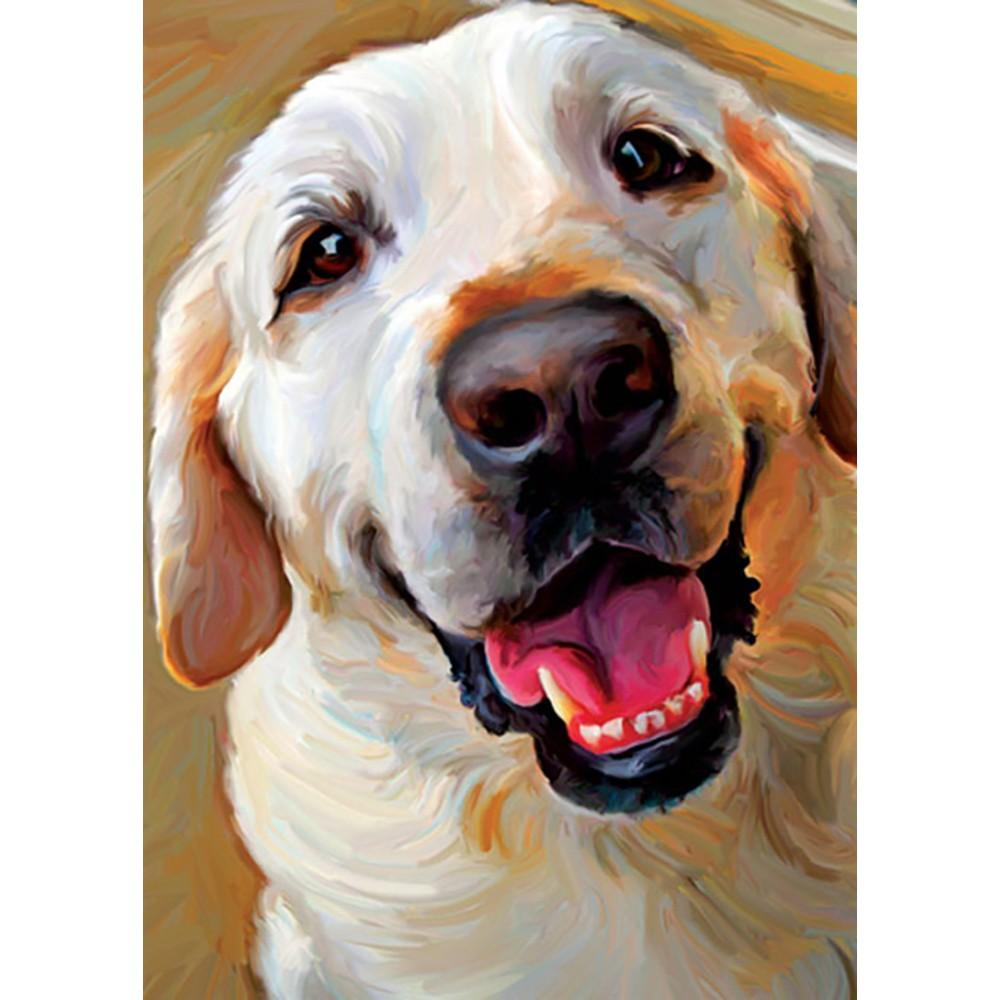 Yellow Dog Smile Birthday Greeting Card 6 pack