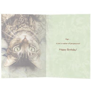 Perspective Birthday Greeting Card 6 pack