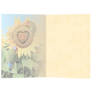 You Are My Sunflower All Occasion Greeting Card 6 pack