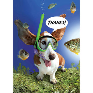 Thanks From Down Deep Thank You Greeting Card 6 pack