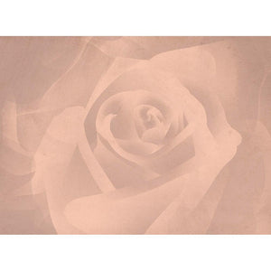 Be Mine Rose Valentine's Day Greeting Card