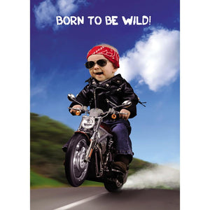 Born To Be Wild Birthday Greeting Card 6 pack