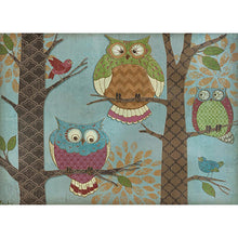Load image into Gallery viewer, Whimsical Owl Birthday Birthday Greeting Card 6 pack