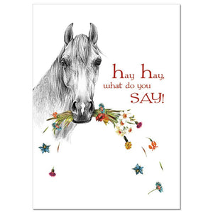 Hay There Birthday Greeting Card 6 pack