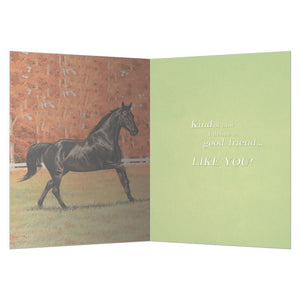 A Good Horse Greeting Card