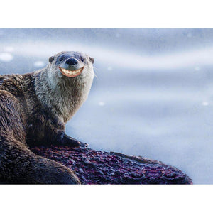 Smiling Otter Greeting Card