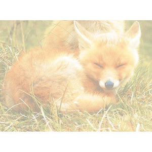 Foxes Relaxing Greeting Card