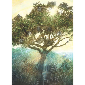 Tree Of Time All Occasion Greeting Card 6 pack