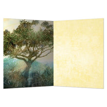 Load image into Gallery viewer, Tree Of Time All Occasion Greeting Card 6 pack