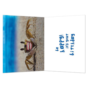 Don't Be Crabby Birthday Greeting Card 6 pack