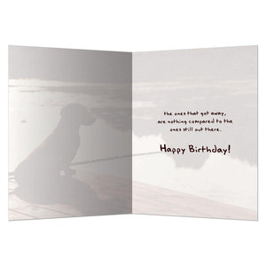 Kind Of Like Fishing Birthday Greeting Card 6 pack