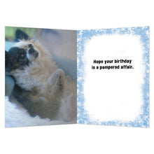 Load image into Gallery viewer, Pampered Affair Greeting Card
