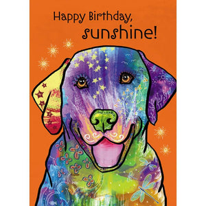 Happy Sunshine Birthday Greeting Card 6 pack