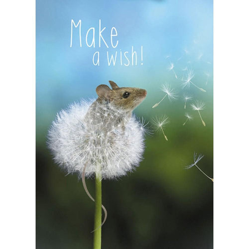 Send This Wishes Come True Birthday Card