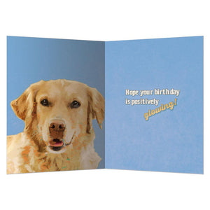 Positively Glowing Birthday Greeting Card 6 pack