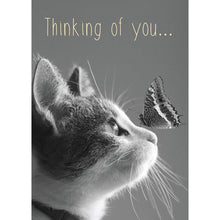 Load image into Gallery viewer, Thoughts Of You Friendship Greeting Card 6 pack
