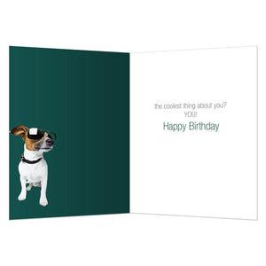 Cool Jack Birthday Greeting Card 6 pack