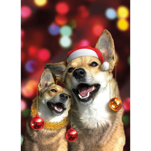 Howly Night Christmas Greeting Card 4 pack
