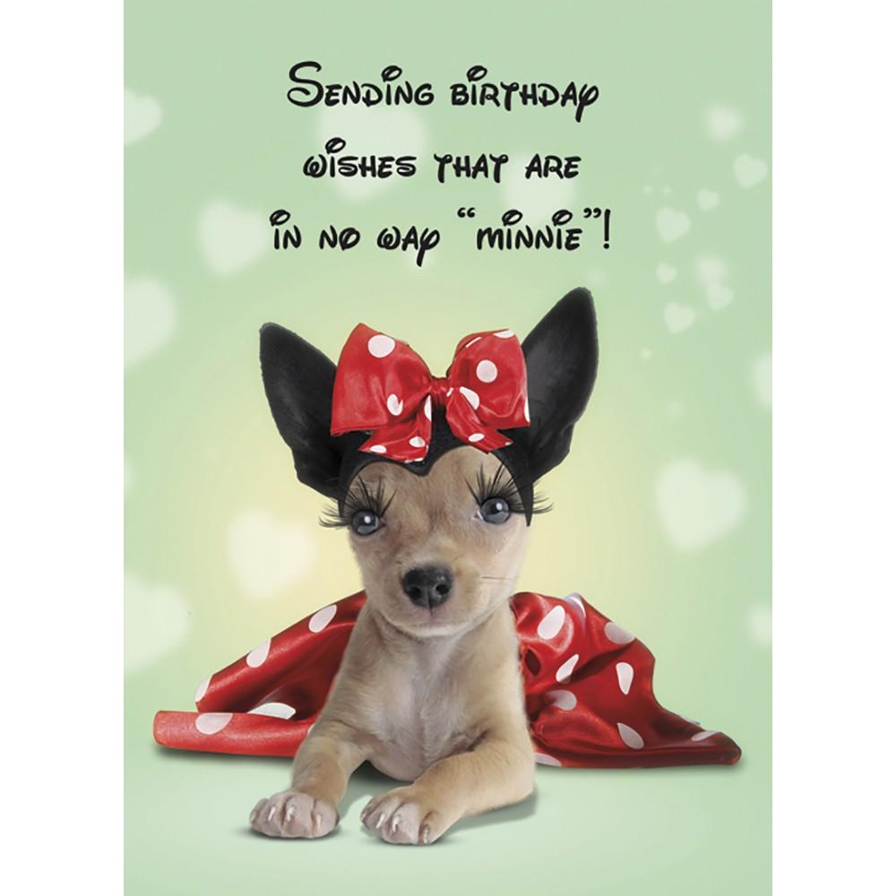 Not Minnie Birthday Greeting Card 6 pack