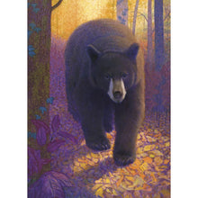 Load image into Gallery viewer, Bear In Golden Glow All Occasion Greeting Card 6 pack