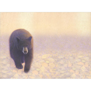 Bear In Golden Glow All Occasion Greeting Card 6 pack