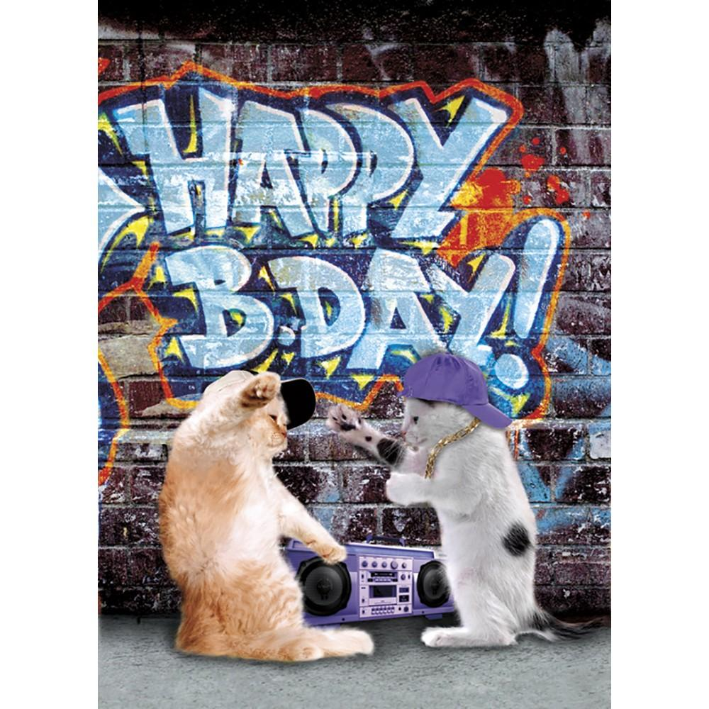 Coolest Cat Birthday Greeting Card 6 pack