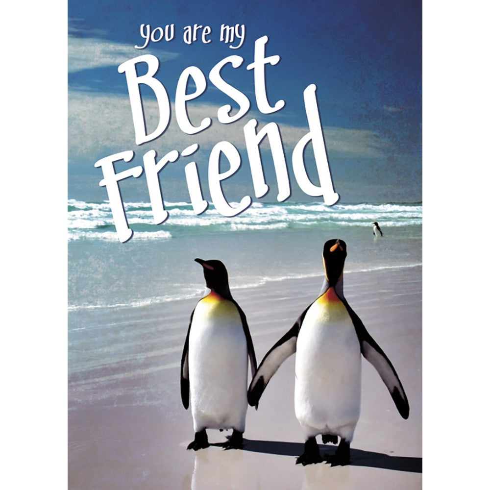 Best Friends Anniversary Greeting Card 6 pack