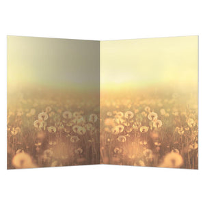 Present Moment All Occasion Greeting Card 6 pack