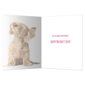 Music In My Heart Mother's Day Greeting Card 4 pack