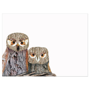 Wisdom Owls Birthday Greeting Card 6 pack