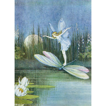 Load image into Gallery viewer, Fairy Dragonfly All Occasion Greeting Card 6 pack