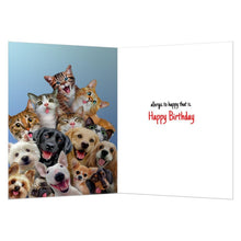 Load image into Gallery viewer, Not Allergic Birthday Greeting Card 6 pack