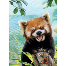 Load image into Gallery viewer, Red Panda Selfie All Occasion Greeting Card 6 pack