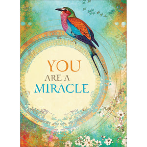 Miracle You All Occasion Greeting Card 6 pack
