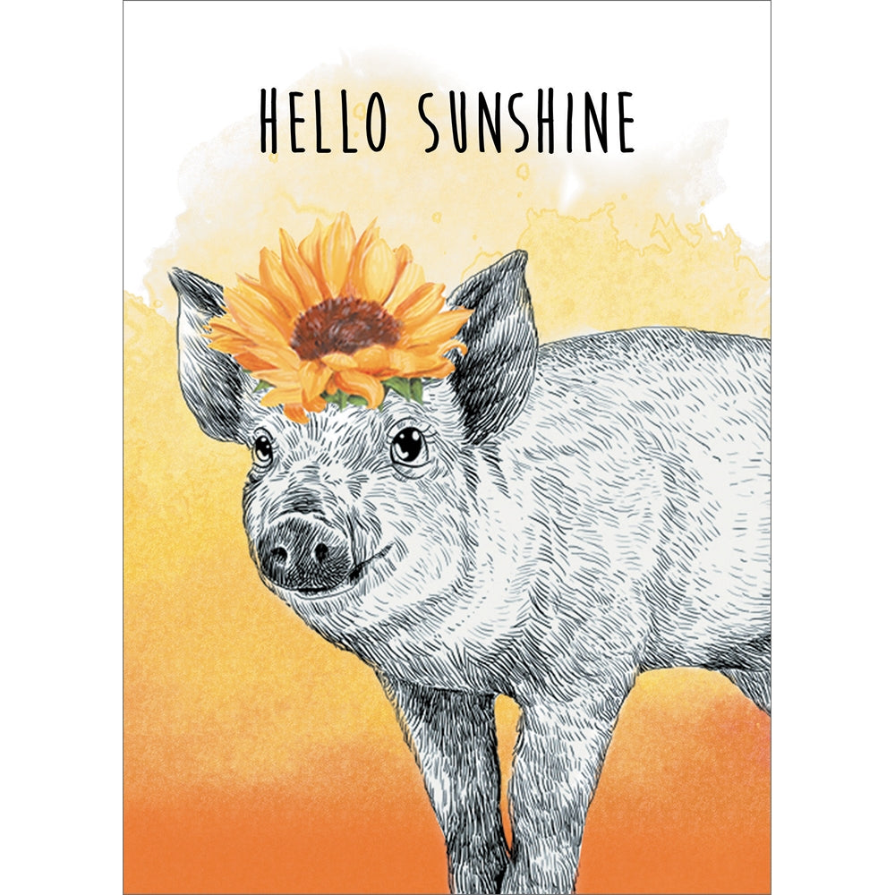 Hello Sunshine Thinking of You Greeting Card 6 pack