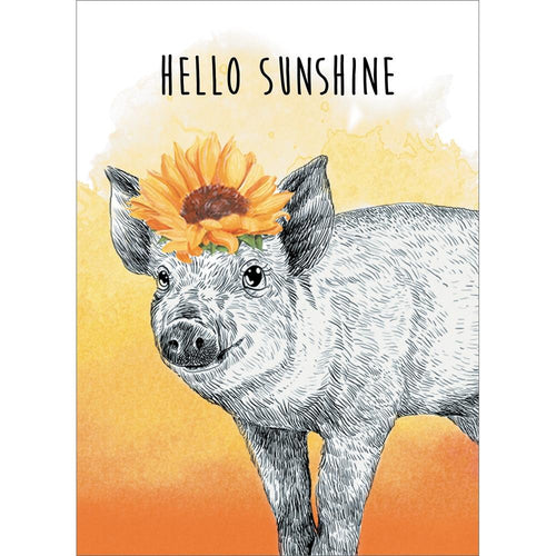 Send This Hello Sunshine Thinking of You Card
