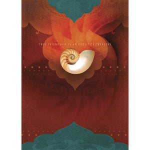 Friendship Nautilus Friendship Greeting Card 6 pack