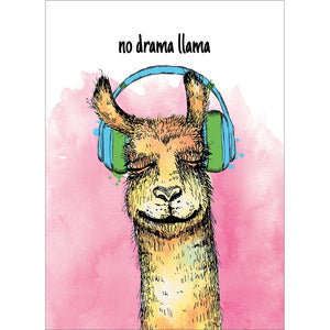 Llama In Tune All Occasion Greeting Card 6 pack