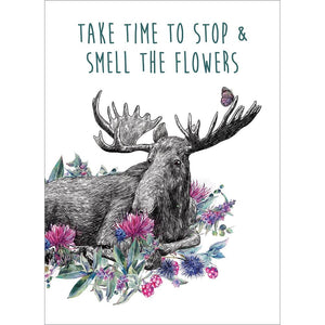 Take Time Moose Birthday Greeting Card 6 pack