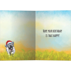 Happy Puppy Day Birthday Greeting Card 6 pack
