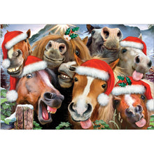Load image into Gallery viewer, Horsing Around Holiday Christmas Greeting Card 4 pack