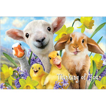 Load image into Gallery viewer, Easter Selfie Easter Greeting Card 4 pack