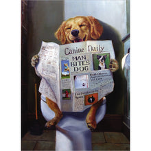 Load image into Gallery viewer, Relief Dog Get Well Greeting Card 6 pack