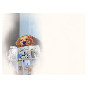 Relief Dog Get Well Greeting Card 6 pack