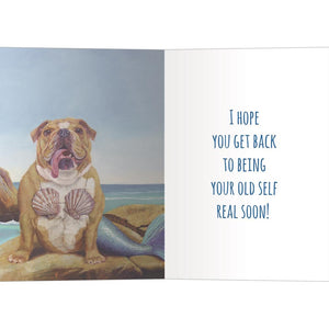 Mer-Dog Get Well Greeting Card 6 pack