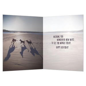 New Perspective Birthday Greeting Card 6 pack