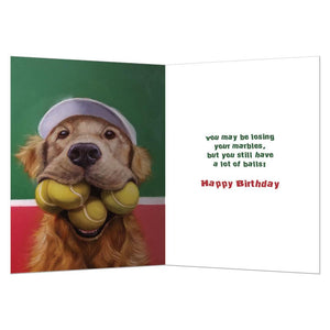 A Lot Of Balls Birthday Greeting Card 6 pack