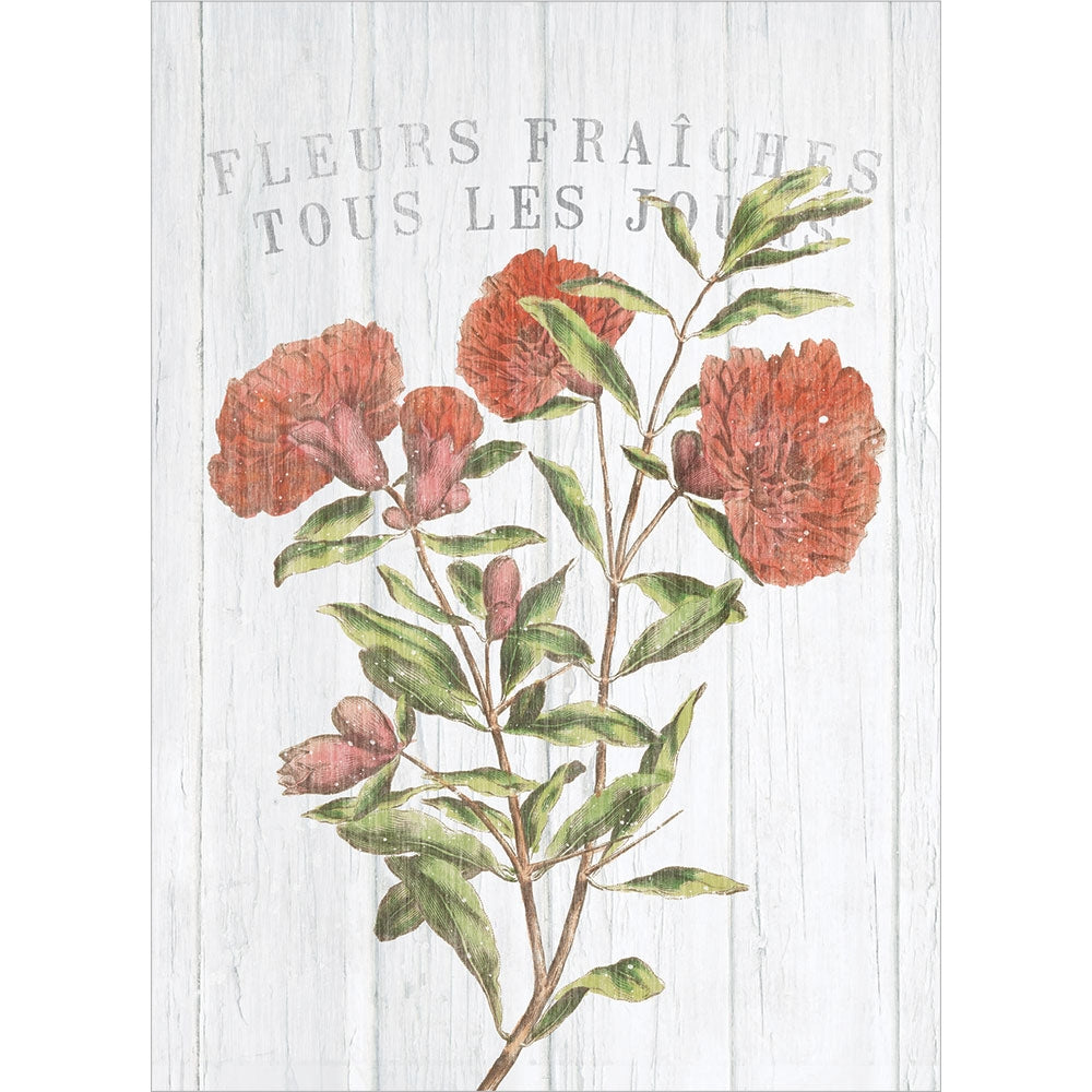 Rustic French Flowers All Occasion Greeting Card 6 pack